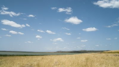 Wide angle Lake Turkana shoreline landscape with dry season grasses and high evaporating clouds;