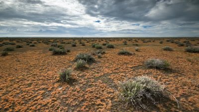 Wide angle pan through 90 degrees of salt scrub tussock plants in vast landscape with distant horizon, Etosha