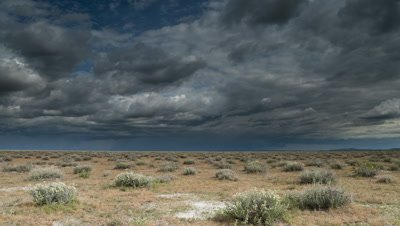 Wide angle pan over Etosha scrubland to reveal approaching rain clouds dropping heavy showers