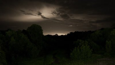 Wide angle electrical storm with lightning over Amazon rainforest canopy at night