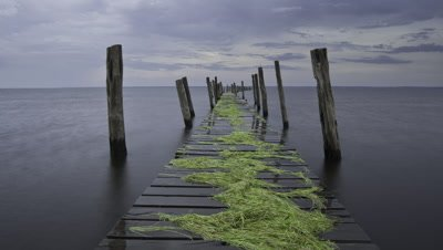 Wide angle stormy skies over the Amazon River with long wooden jetty strewn with weed stretching into distance