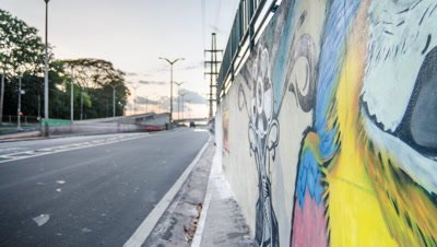 Track back to reveal Macaw graffiti on Manaus street