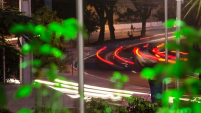 car lights speed through vegetation at night
