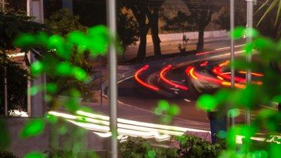 car lights speed through vegetation at night