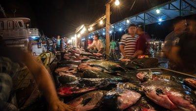 Fish market at night