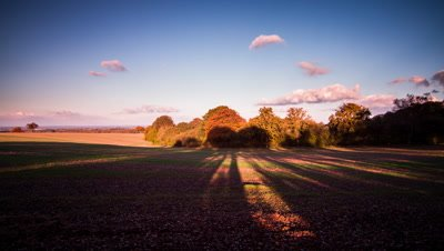 Tree shadows lengthen and move across fields as sun sets.