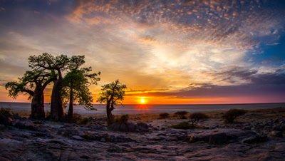 Sunrise, Baobabs, Kubu Island