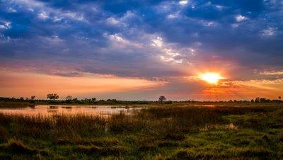 Over cast Sunrise, Okavango Delta