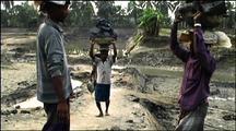 Bengali Men Carry Mud For Brick Making