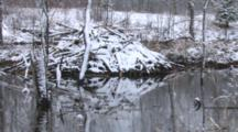 Beaver Lodge In Spring Pond, Fresh Snow
