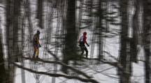 Tracking American Birkebeiner Skiers, Ski Trail Through Dense Woods