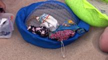 Captured Piping Plover Chicks In Cloth Bags, Wiggling Bags