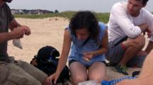 Piping Plover Patrol, Group At Work Banding Piping Plover Chicks
