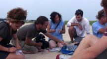 Piping Plover Chick Getting Banded, Zo To Student Group Project