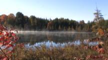 Mist Rising From Lake, Fall Colors, Tamarack Trees, White Pines, Sumac