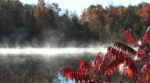 Morning Mist On Small Lake, Staghorn Sumac In Fg, Fall Colors