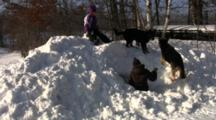 Kids And Dogs Playing In Snow, Dog Barking, Kids Digging Snow Cave