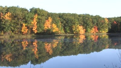 Autumn Colored Trees,Reflection in Small Lake