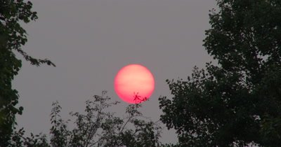 Red,Setting Sun,Sun Spots Visible,Haze in Atmosphere from Distant Forest Fires