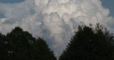 CU Cumulus Clouds,Rainstorm Building Over Vee of Deciduous Trees