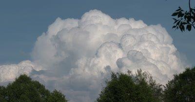 Time Lapse,Cumulus Rain Cloud Building Over Deciduous Treeline