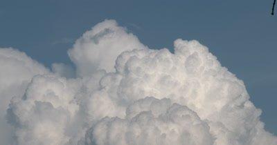 Cumulus Cloud,Bird Flies Through Frame