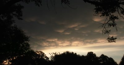 Cumulonimbus Clouds with Mammatus,Hailstorm and Turbulence,Deciduous Trees