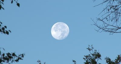 Full Moon in Blue Sky,Super Moon