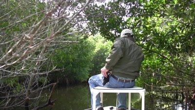 Mangrove Swamp, Maneuvering Through Everglades National Park