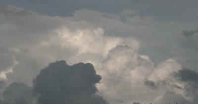 CU Cumulus Clouds, Storm Clouds Over Deciduous Treeline