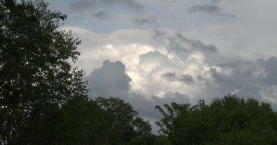 Storm Clouds Over Deciduous Treeline, ZO to WA