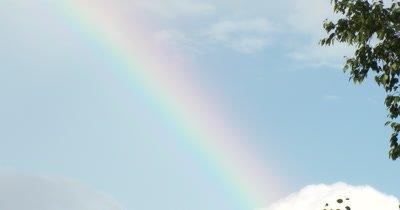 Large Rainbow, Clouds in SE Corner, Birch Tree