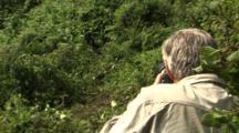 Scientist Photographs Mountain Gorilla As It Feeds