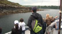 Whale Watchers On Boat, Zoom Into Grey Seals (Halichoerus Grypus). Coming Into Tobermory Harbour.Mull. Uk. 22/07/08