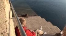 Person On Harbor Steps Watches Otter Feed, Tobermory. Mull. Uk
