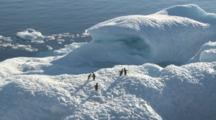 Move Past Ice With Adelie Penguins (Pygoscelis Adeliae) Viewed From Ship. Antarctic Sound