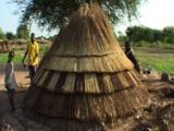 Building Traditional Reed Roof Home, Southern Sudan