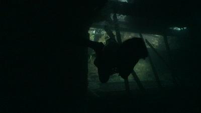 Divers enter wreck of the thistlegorm, Antarctica