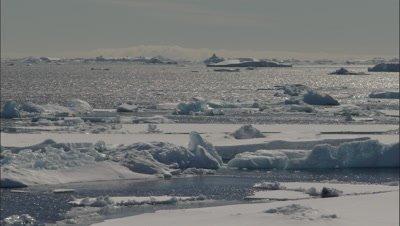 Icebergs and broken sea ice on Weddell Sea