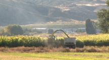 Farming Corn For Biodiesel