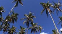 Seychelles Scenic Stock Footage