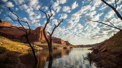 Time-lapse on Lake Powell with a tree and clouds reflecting in the water.
