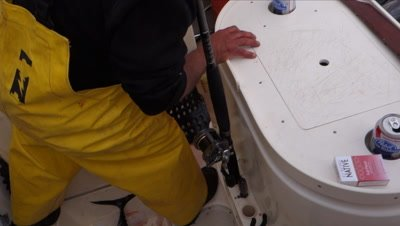 Albacore Tuna fishing on a sport boat catch of the day