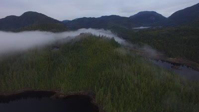 4K Aerial of Nimmo Bay and the surrounding forests in fog in the morning