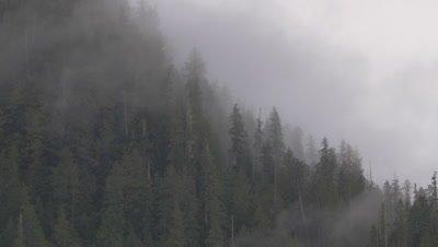 British Columbia, Canada 4k