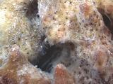 Barrel Sponge Spawning