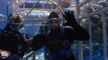 Diver In Shark Cage