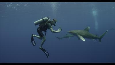 Ultra HD Scuba Diving Adventure