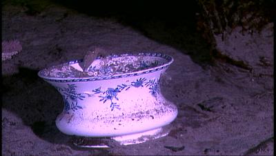 Titanic Wreck - Teacup