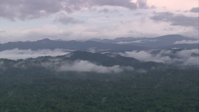 Clouds on mountains and rainforest